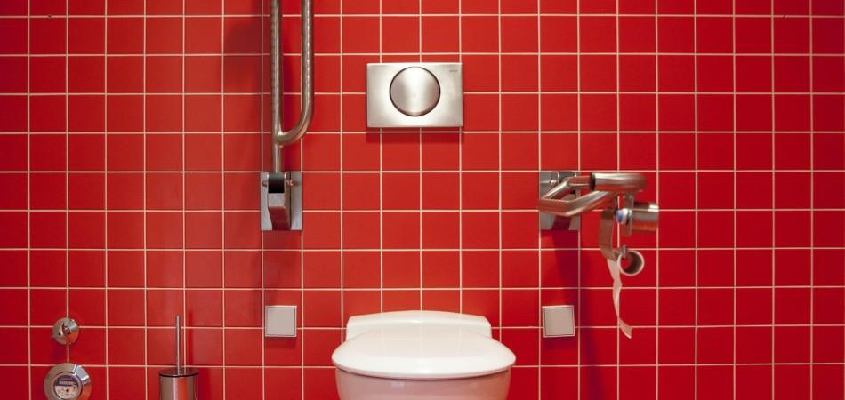 Toilet with flush